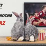 LV BET z bonusem 20 PLN dla graczy. Tylko w Wielkanoc!